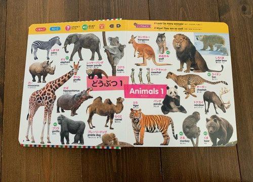 はじめてずかん1000の動物のページ